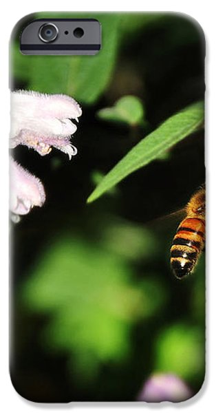 Bee in Flight iPhone Case by Kaye Menner