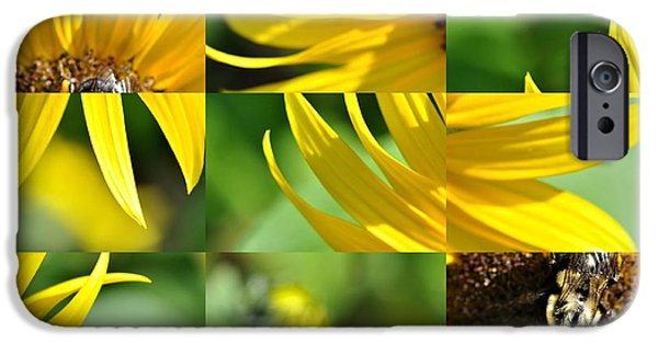 Floral Photographs iPhone Cases - Bee on Sunflower  iPhone Case by Elaine Manley