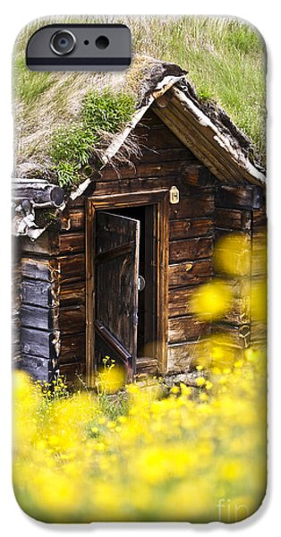 Frame House Photographs iPhone Cases - Behind Yellow Flowers iPhone Case by Heiko Koehrer-Wagner
