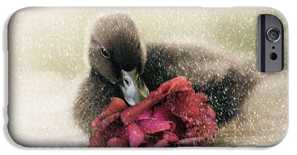 Duckling Photography iPhone Cases - Bella in the Snow iPhone Case by Amy Tyler