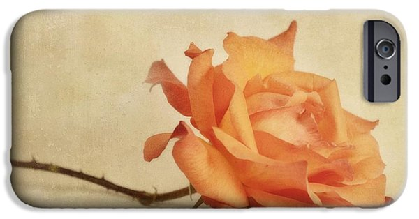 Rose iPhone Cases - Bellezza iPhone Case by Priska Wettstein