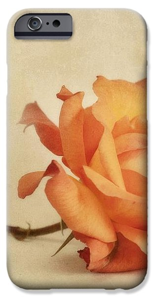 bellezza iPhone Case by Priska Wettstein