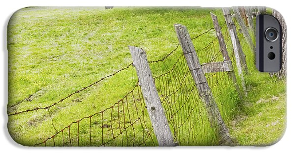 Barbed Wire Fences iPhone Cases - Belted Galloway Cows Farm Rockport Maine iPhone Case by Keith Webber Jr