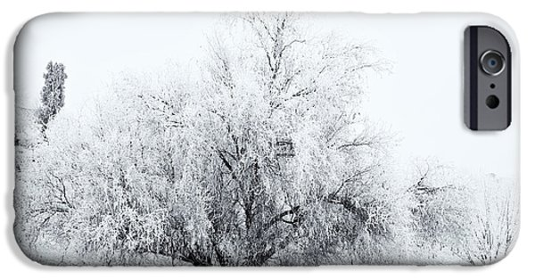 Yakima Valley iPhone Cases - Beneath a Frosty Canopy iPhone Case by Mike  Dawson
