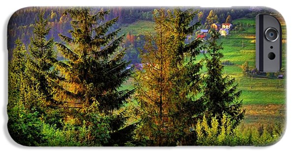 Dog In Landscape iPhone Cases - Beskidy Mountains iPhone Case by Mariola Bitner