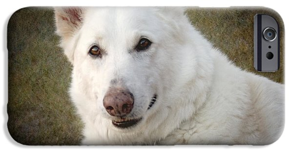 Dogs Digital Art iPhone Cases - Best Friend iPhone Case by Ellen Heaverlo
