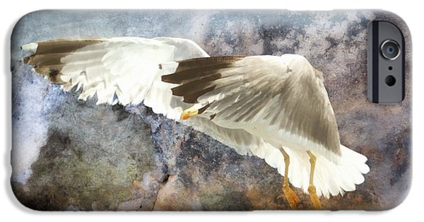 Flying Seagull iPhone Cases - Between Heaven And Earth iPhone Case by Georgiana Romanovna