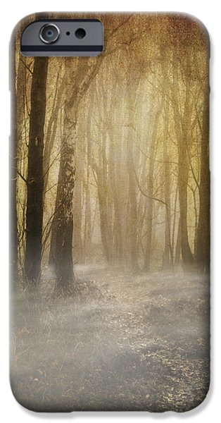 Eerie iPhone Cases - Beware Misty Woodland Path iPhone Case by Meirion Matthias