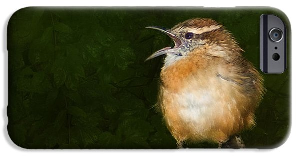 Wren iPhone Cases - Big Mouth  iPhone Case by Steven Richardson