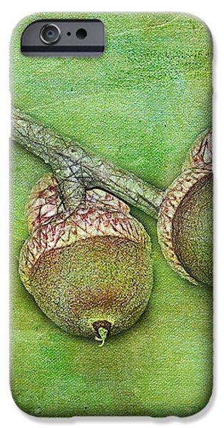 Big Oaks from Little Acorns Grow iPhone Case by Judi Bagwell
