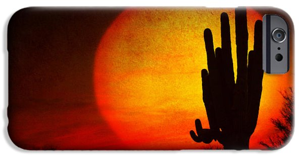 Striking Photography iPhone Cases - Big Saguaro Sunset iPhone Case by James BO  Insogna