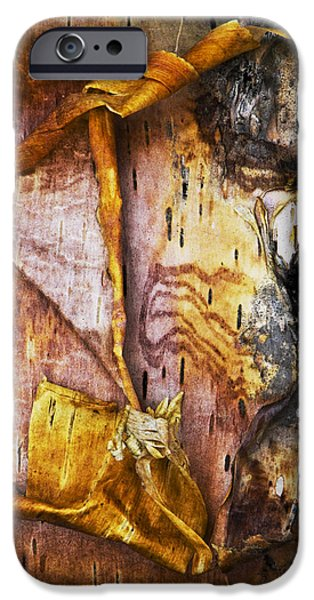Nature Abstracts iPhone Cases - Birch Tree Bark No.0885 iPhone Case by Randall Nyhof