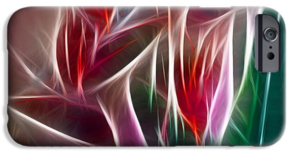 Morphed iPhone Cases - Bird of Paradise Fractal Panel 2 iPhone Case by Peter Piatt