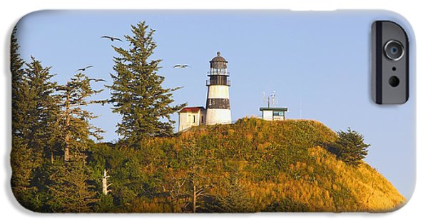Cape Disappointment iPhone Cases - Birds In Flight Over Cape iPhone Case by Craig Tuttle