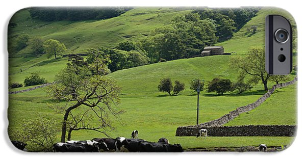 Grazing Sheep iPhone Cases - Bishopdale in the Yorkshire Dales National Park iPhone Case by Louise Heusinkveld