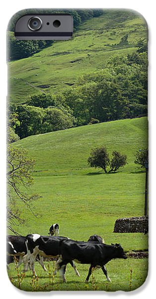 Bishopdale in the Yorkshire Dales National Park iPhone Case by Louise Heusinkveld