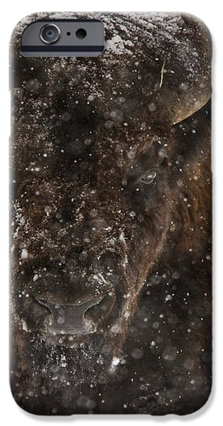 Bison Buffalo Wyoming Yellowstone iPhone Case by Mark Duffy