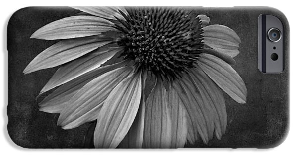 Bittersweet iPhone Cases - Bittersweet Memories - BW iPhone Case by David Dehner
