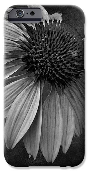 Bittersweet Memories - BW iPhone Case by David Dehner
