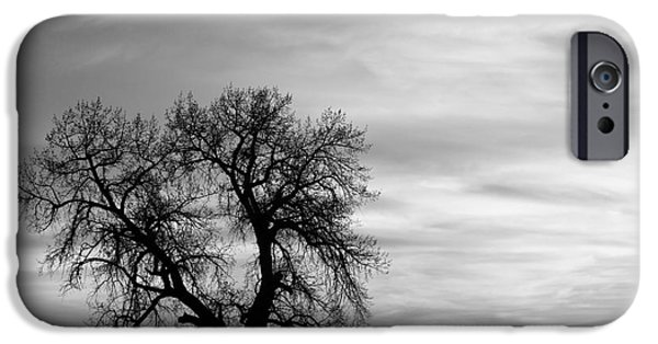 Epic iPhone Cases - Black and White Country Morning iPhone Case by James BO  Insogna