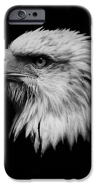 Black and White Eagle iPhone Case by Steve McKinzie