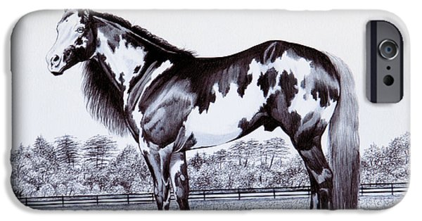 Overo iPhone Cases - Black and White Overo Paint Horse iPhone Case by Cheryl Poland