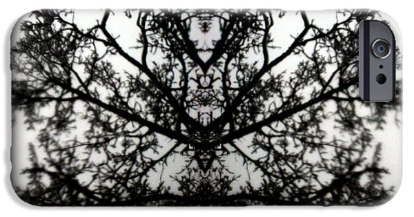 Amy Sorrell iPhone Cases - Black Mold iPhone Case by Amy Sorrell