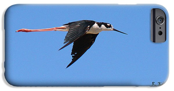 Small iPhone Cases - Black-necked Stilt Flying Alone iPhone Case by Roena King