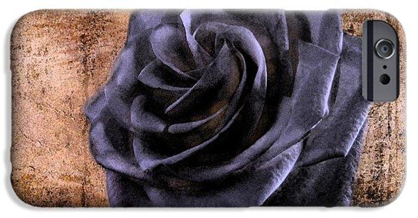Business Digital iPhone Cases - Black Rose Eternal   iPhone Case by David Dehner
