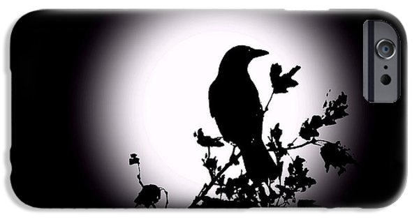 David iPhone Cases - Blackbird in Silhouette  iPhone Case by David Dehner
