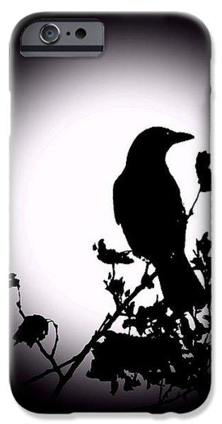 Blackbird in Silhouette  iPhone Case by David Dehner