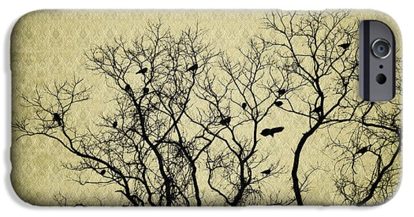 Roosting iPhone Cases - Blackbirds Roost iPhone Case by Bill Cannon