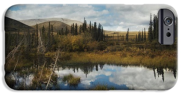 Yukon Territory iPhone Cases - Blissful Lone Land iPhone Case by Priska Wettstein