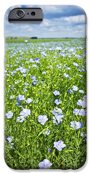 Meadow Photographs iPhone Cases - Blooming flax field iPhone Case by Elena Elisseeva