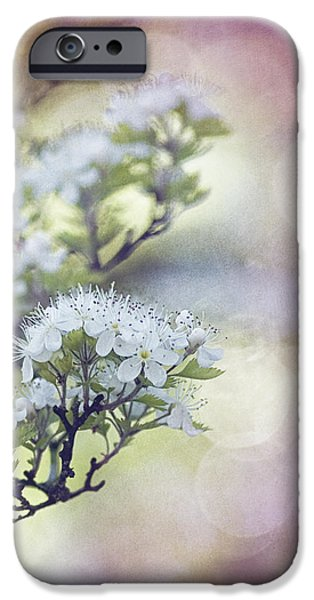 Blossom iPhone Case by Joel Olives