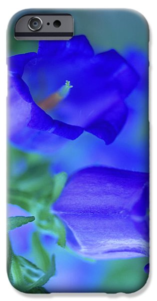 Blue Bell Flowers iPhone Case by Kathy Yates