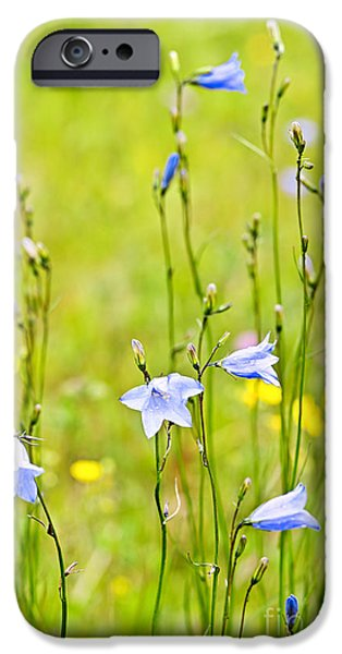 Blue harebells wildflowers iPhone Case by Elena Elisseeva