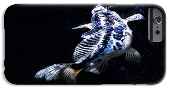 Butterfly Koi Photographs iPhone Cases - Blue Koi surfacing iPhone Case by Don Mann