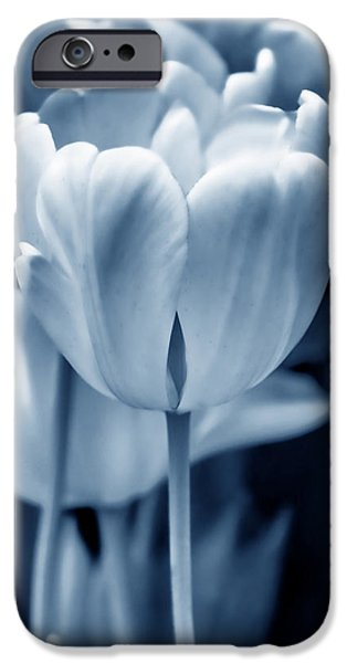 Monotone iPhone Cases - Blue Luminous Tulip Flowers iPhone Case by Jennie Marie Schell