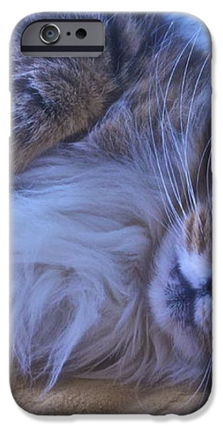 Blue Oblivion iPhone Case by Gwyn Newcombe