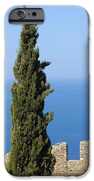 Blue ocean and sky green tree - Serene and calming  iPhone Case by Matthias Hauser