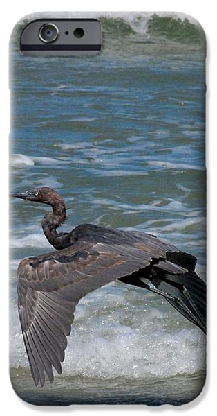 Blue on the Beach iPhone Case by David Lane