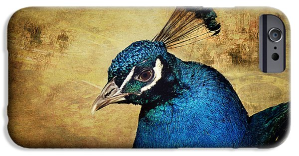 Birds iPhone Cases - Blue Peacock iPhone Case by Angela Doelling AD DESIGN Photo and PhotoArt