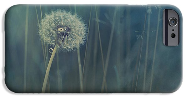 Meadow Photographs iPhone Cases - Blue Tinted iPhone Case by Priska Wettstein