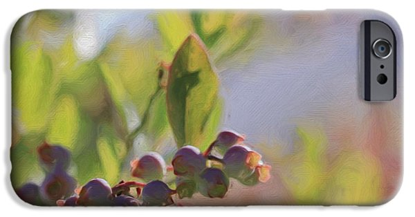 Berry iPhone Cases - Blueberries And Sunlight iPhone Case by Heidi Smith