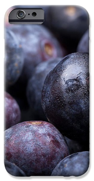 Blueberry background iPhone Case by Jane Rix
