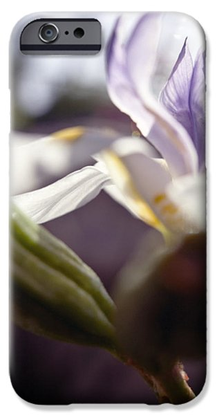 Blurred Iris iPhone Case by Ray Laskowitz - Printscapes