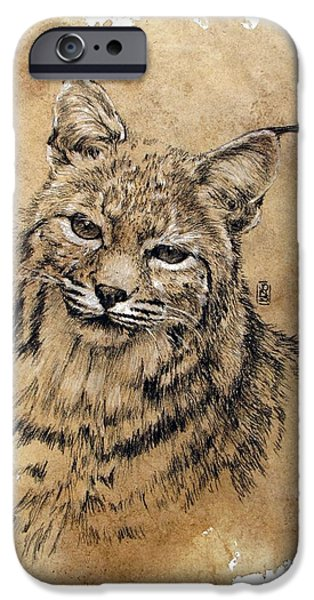 Bobcat iPhone Case by Debra Jones