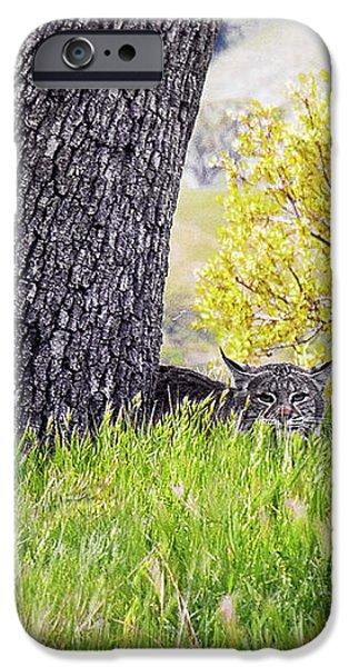 Bobcat Watch iPhone Case by Karen  W Meyer