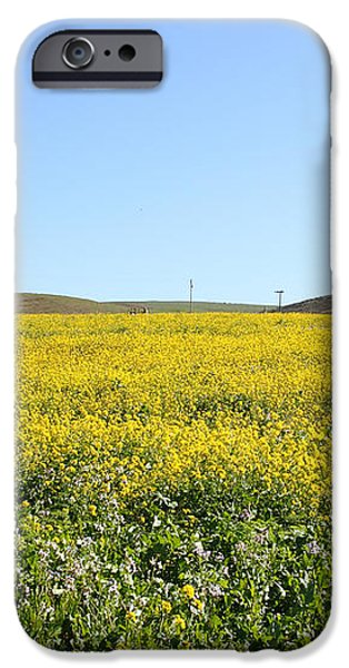 Bodega Bay . Yellow Field . 7D12403 iPhone Case by Wingsdomain Art and Photography